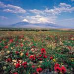 armenia_1